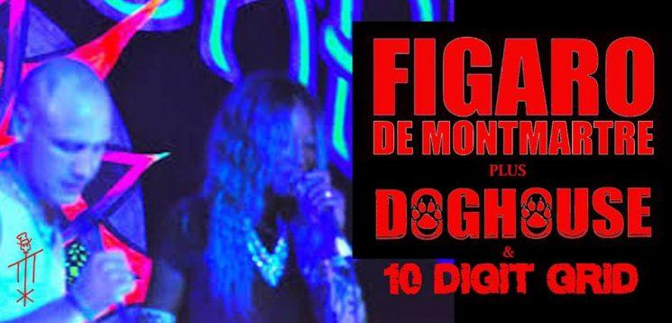 Figaro de Monmartre, Doghouse, 10 Digit Grid