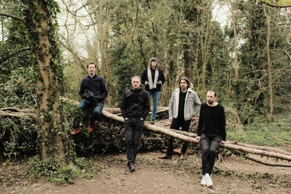 The 5 members of Fuzzy Lights, some seated, some standing, in a woodland setting